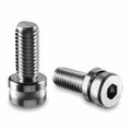 Adjustable screw